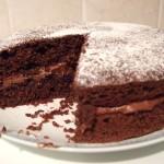 Choc sponge cake